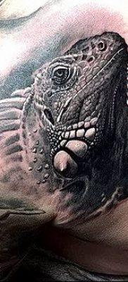 фото тату Игуана от 09.02.2018 №009 – Iguana tattoo – tatufoto.com