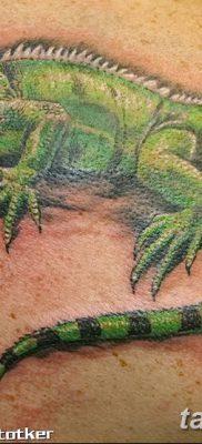фото тату Игуана от 09.02.2018 №012 – Iguana tattoo – tatufoto.com