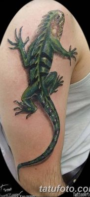 фото тату Игуана от 09.02.2018 №013 – Iguana tattoo – tatufoto.com