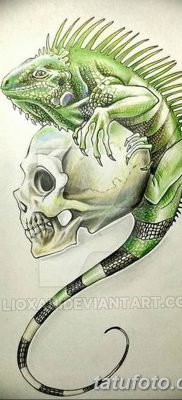 фото тату Игуана от 09.02.2018 №014 – Iguana tattoo – tatufoto.com