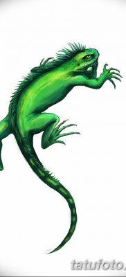 фото тату Игуана от 09.02.2018 №016 – Iguana tattoo – tatufoto.com