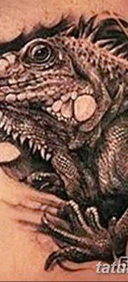 фото тату Игуана от 09.02.2018 №033 – Iguana tattoo – tatufoto.com