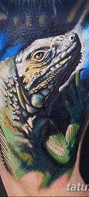 фото тату Игуана от 09.02.2018 №039 – Iguana tattoo – tatufoto.com
