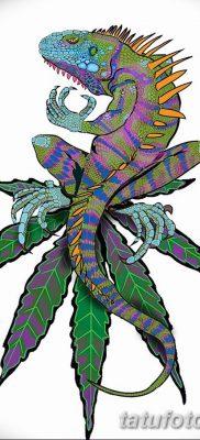 фото тату Игуана от 09.02.2018 №042 – Iguana tattoo – tatufoto.com