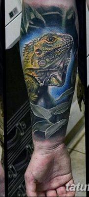 фото тату Игуана от 09.02.2018 №045 – Iguana tattoo – tatufoto.com