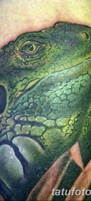 фото тату Игуана от 09.02.2018 №051 – Iguana tattoo – tatufoto.com