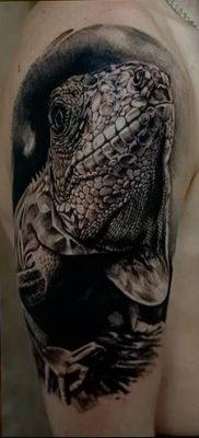 фото тату Игуана от 09.02.2018 №052 – Iguana tattoo – tatufoto.com