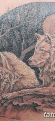фото тату белый волк от 07.02.2018 №001 – white wolf tattoo – tatufoto.com