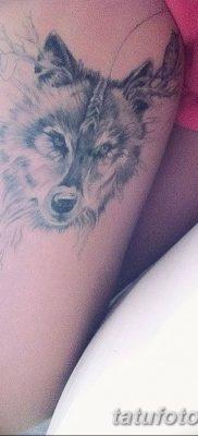 фото тату белый волк от 07.02.2018 №004 – white wolf tattoo – tatufoto.com