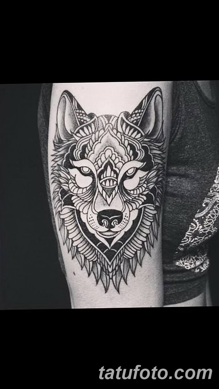 фото тату белый волк от 07.02.2018 №005 - white wolf tattoo - tatufoto.com