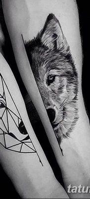 фото тату белый волк от 07.02.2018 №008 – white wolf tattoo – tatufoto.com