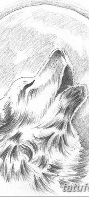 фото тату белый волк от 07.02.2018 №010 – white wolf tattoo – tatufoto.com