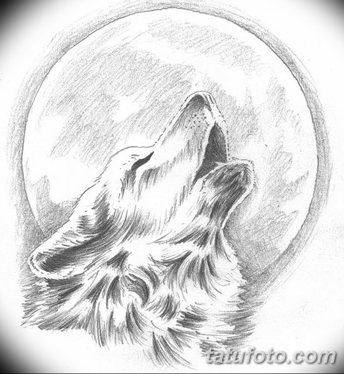 фото тату белый волк от 07.02.2018 №010 - white wolf tattoo - tatufoto.com