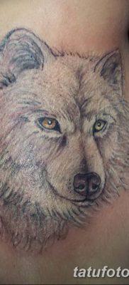 фото тату белый волк от 07.02.2018 №013 – white wolf tattoo – tatufoto.com