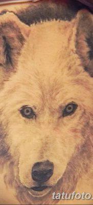 фото тату белый волк от 07.02.2018 №015 – white wolf tattoo – tatufoto.com
