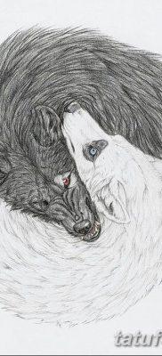 фото тату белый волк от 07.02.2018 №018 – white wolf tattoo – tatufoto.com