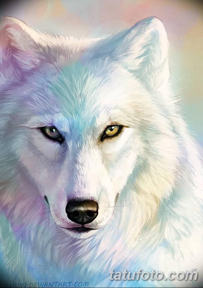 фото тату белый волк от 07.02.2018 №019 - white wolf tattoo - tatufoto.com