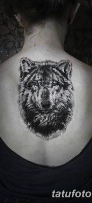 фото тату белый волк от 07.02.2018 №021 – white wolf tattoo – tatufoto.com