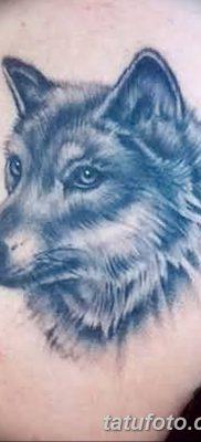 фото тату белый волк от 07.02.2018 №027 – white wolf tattoo – tatufoto.com
