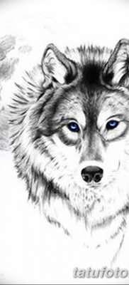 фото тату белый волк от 07.02.2018 №034 – white wolf tattoo – tatufoto.com