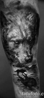фото тату белый волк от 07.02.2018 №042 – white wolf tattoo – tatufoto.com