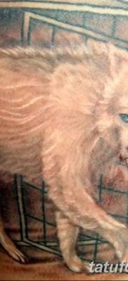 фото тату белый волк от 07.02.2018 №049 – white wolf tattoo – tatufoto.com