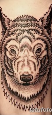 фото тату белый волк от 07.02.2018 №053 – white wolf tattoo – tatufoto.com