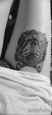 фото тату белый волк от 07.02.2018 №057 – white wolf tattoo – tatufoto.com