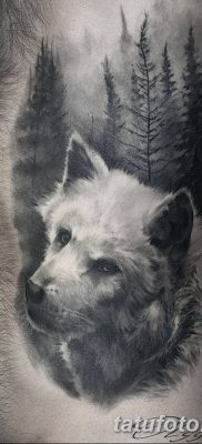 фото тату белый волк от 07.02.2018 №060 – white wolf tattoo – tatufoto.com