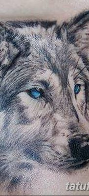 фото тату белый волк от 07.02.2018 №061 – white wolf tattoo – tatufoto.com
