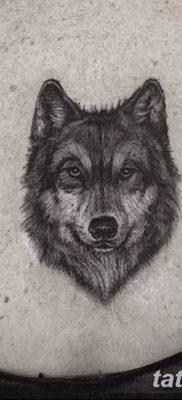 фото тату белый волк от 07.02.2018 №062 – white wolf tattoo – tatufoto.com