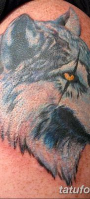 фото тату белый волк от 07.02.2018 №063 – white wolf tattoo – tatufoto.com