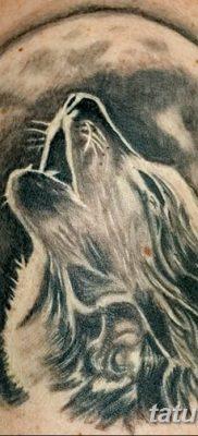 фото тату белый волк от 07.02.2018 №065 – white wolf tattoo – tatufoto.com