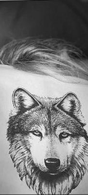 фото тату белый волк от 07.02.2018 №066 – white wolf tattoo – tatufoto.com