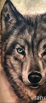 фото тату белый волк от 07.02.2018 №068 – white wolf tattoo – tatufoto.com