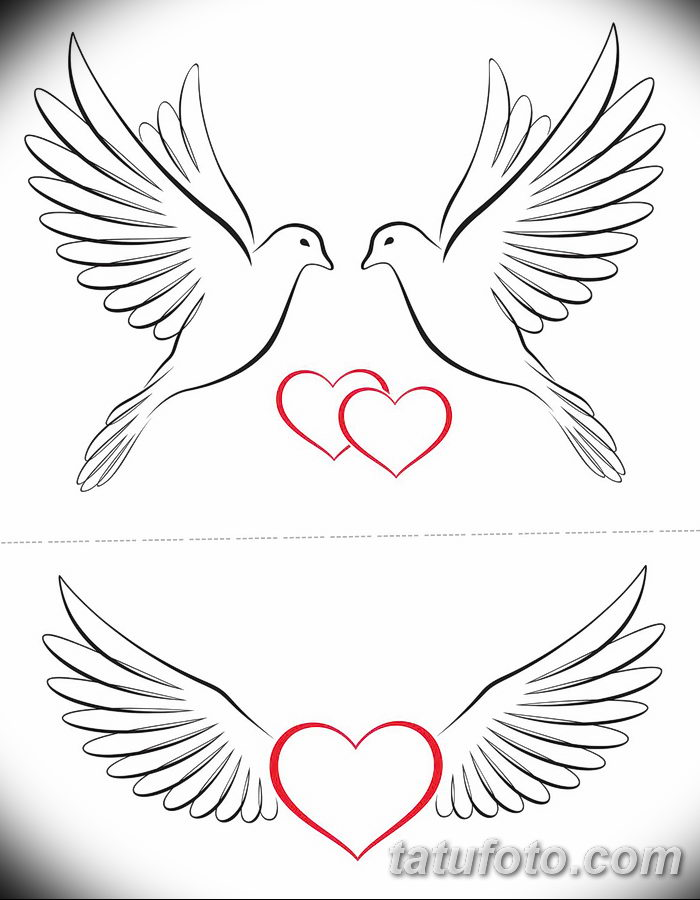 фото тату голубки от 02.02.2018 №005 - tattoo of the dove - tatufoto.com