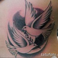 Значение тату голубки