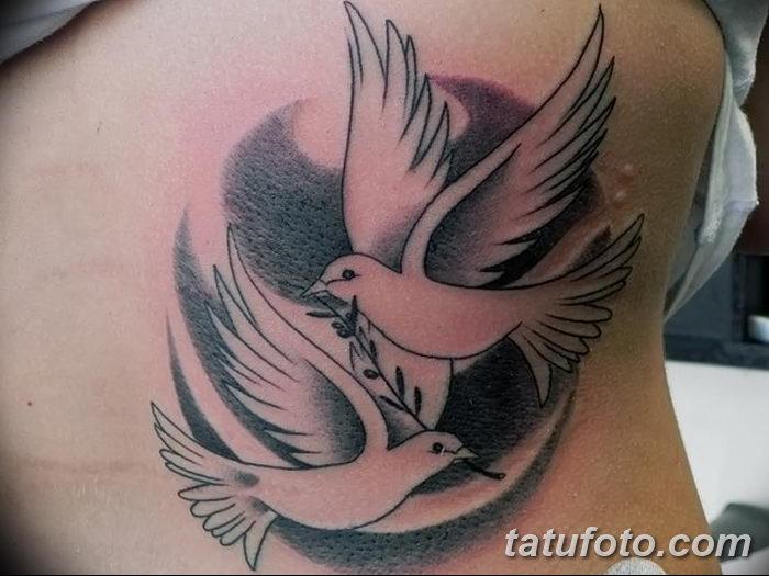 фото тату голубки от 02.02.2018 №026 - tattoo of the dove - tatufoto.com
