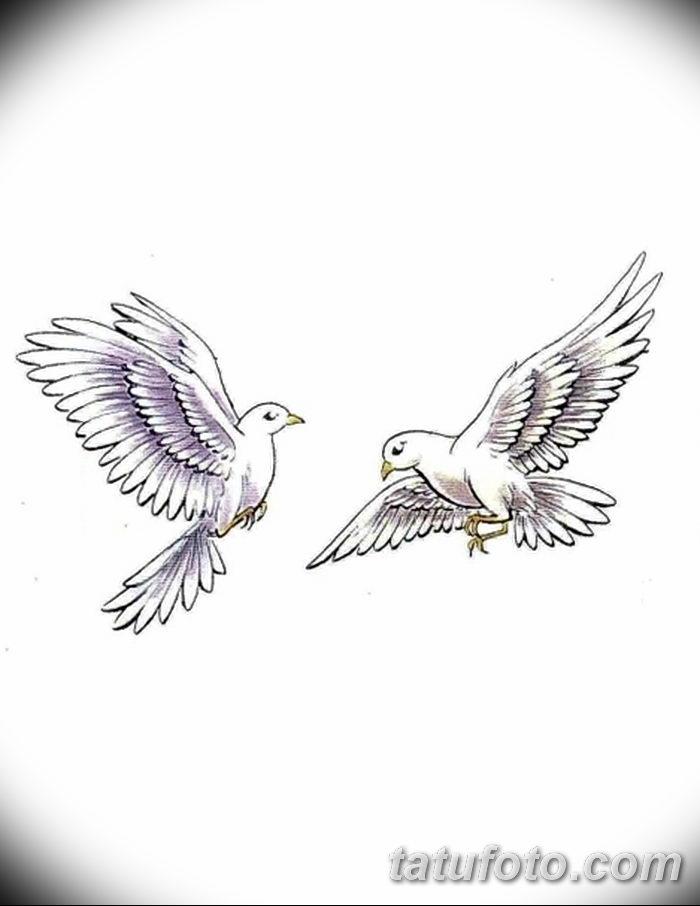 фото тату голубки от 02.02.2018 №029 - tattoo of the dove - tatufoto.com
