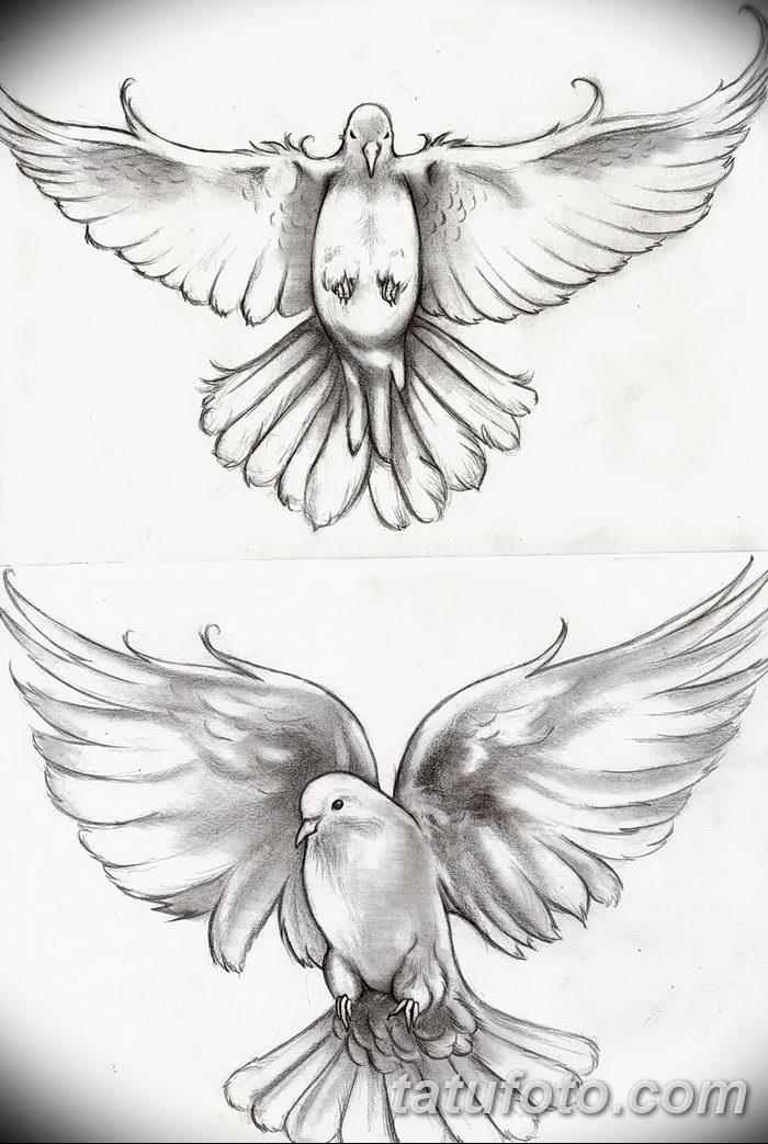 фото тату голубки от 02.02.2018 №042 - tattoo of the dove - tatufoto.com