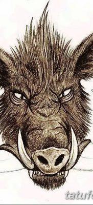 фото тату кабан от 12.02.2018 №032 – tattoo boar – tatufoto.com