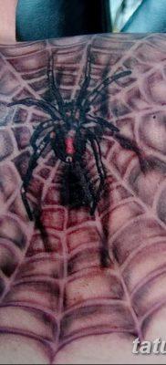 фото тату паутина на локте от 06.02.2018 №051 – tattoo spider web on elbow – tatufoto.com