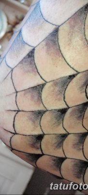 фото тату паутина на локте от 06.02.2018 №074 – tattoo spider web on elbow – tatufoto.com