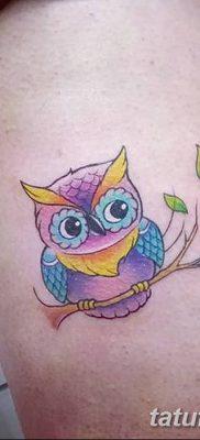 фото тату сова для девушек от 19.02.2018 №004 – owl tattoo for girls – tatufoto.com