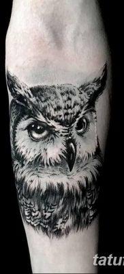 фото тату сова для девушек от 19.02.2018 №030 – owl tattoo for girls – tatufoto.com