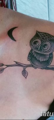 фото тату сова для девушек от 19.02.2018 №038 – owl tattoo for girls – tatufoto.com