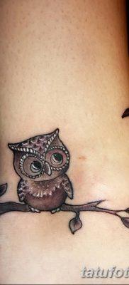 фото тату сова для девушек от 19.02.2018 №055 – owl tattoo for girls – tatufoto.com