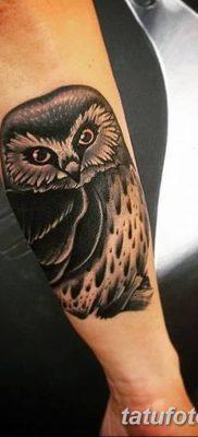фото тату сова для девушек от 19.02.2018 №063 – owl tattoo for girls – tatufoto.com