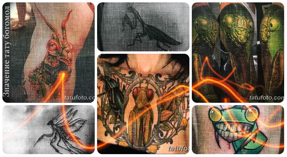 Значение тату богомол - коллекция готовых рисунков татуировки на фото