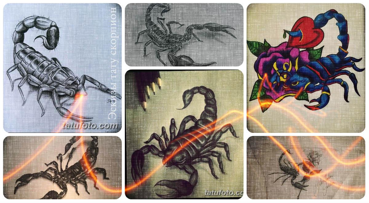 Эскизы тату скорпион - оригинальные варианты рисунков для татуировки